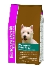 EUK AD WEST HIGHLAND WHITE TERRIER CKN